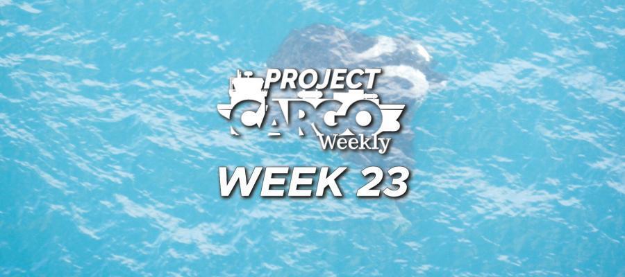 PCW-Week-23-2020